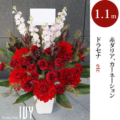 渋谷AR009 大きめアレンジメント | 赤ダリア、カーネーション、ドラセナ他