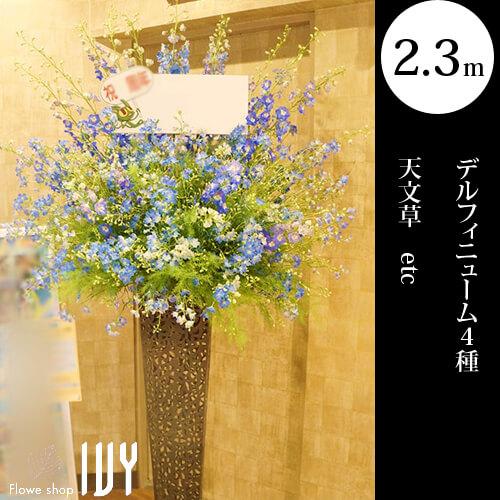 渋谷OS023 籐スタンド花 | デルフィニューム4種、天文草他